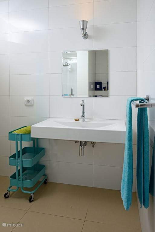 Badkamer grenzend aan master bedroom, regendouche, wastafel en toilet