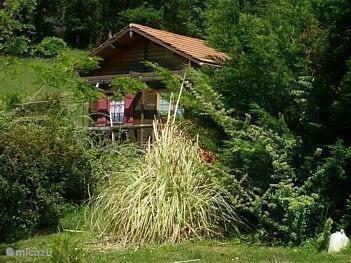 Vacation rental France, Pyrenees, Castetpugon - chalet La Fougere