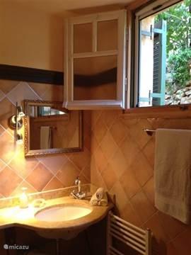 De badkamer op de benedenverdieping.