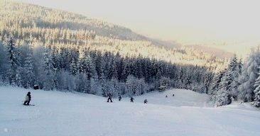 In de winter kunt u skiën op één uur rijafstand van het park. Deze banen zijn niet al te duur en uitstekend voor beginners. Foto Karlstift