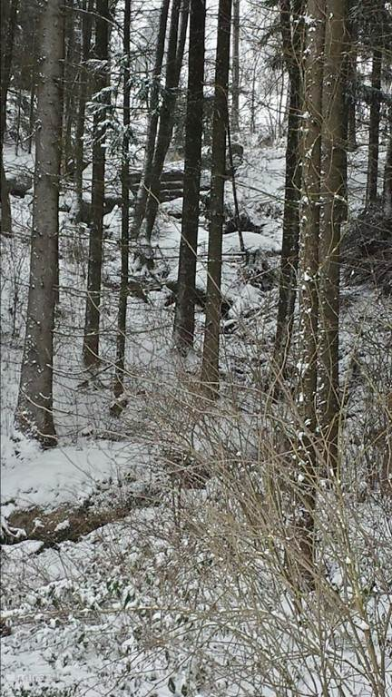 A mountain stream just next to the park (balcony view in winter)