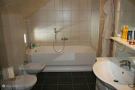 The beautiful bathroom on the first floor with hot tub, toilet, bidet, sink and sauna access.