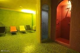 In onze wellnessruimte kunt u heerlijk ontspannen in de sauna of het Turks stoombad.