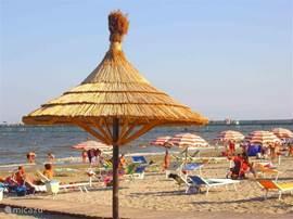 Het strand is voorzien van beachbar waar u snacks