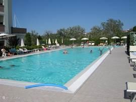 Zwembad met ruim zonneterras waar voldoende parasols en ligbedden staan zodat u optimaal van de zon kunt genieten.