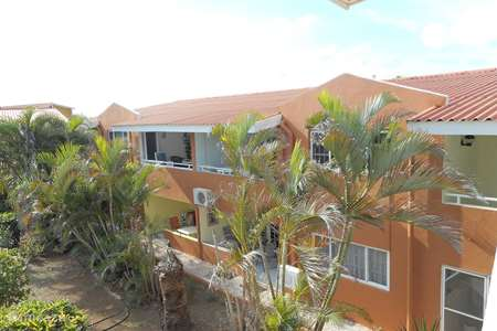 Vacation rental Curaçao, Curacao-Middle, Koraal Partier apartment Ankateam app A144