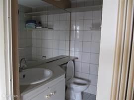 Badkamer met wastafel, toilet en douche