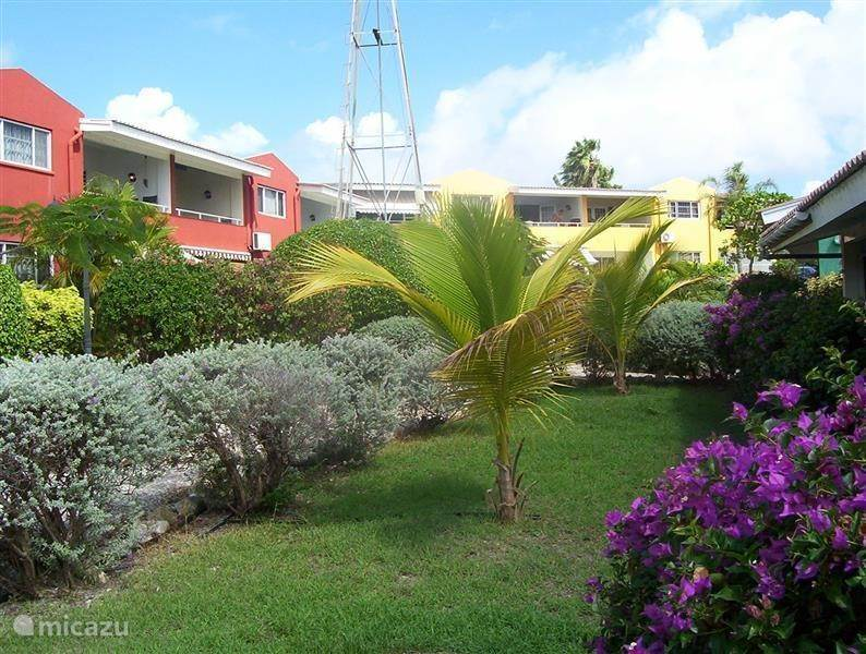 Vacation rental Curaçao, Curacao-Middle, Koraal Partier Apartment ANKATEAM Seru Coral Resort app A168