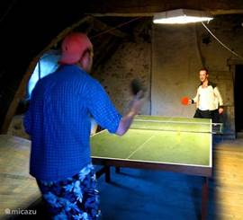 Table tennis in the attic