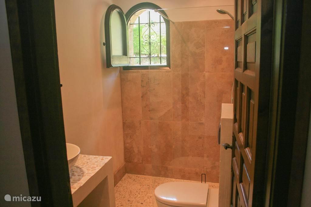 Badkamer met wasbak, douche en toilet