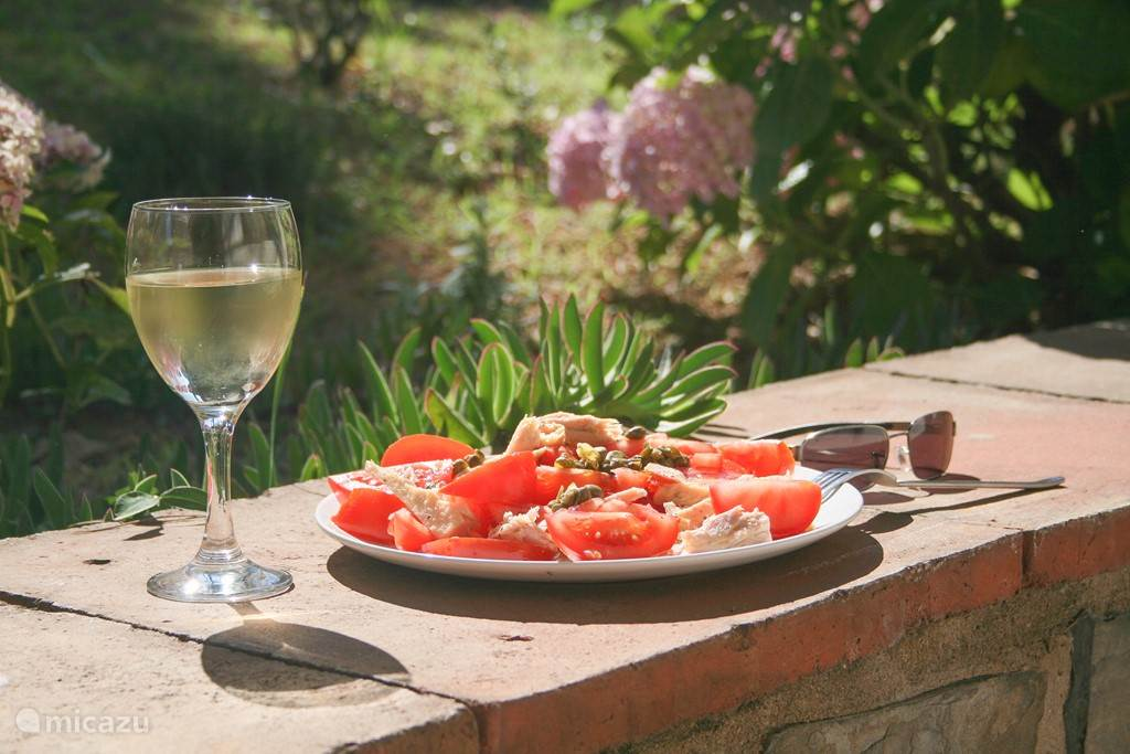 Heerlijke tomatensalade in de voortuin
