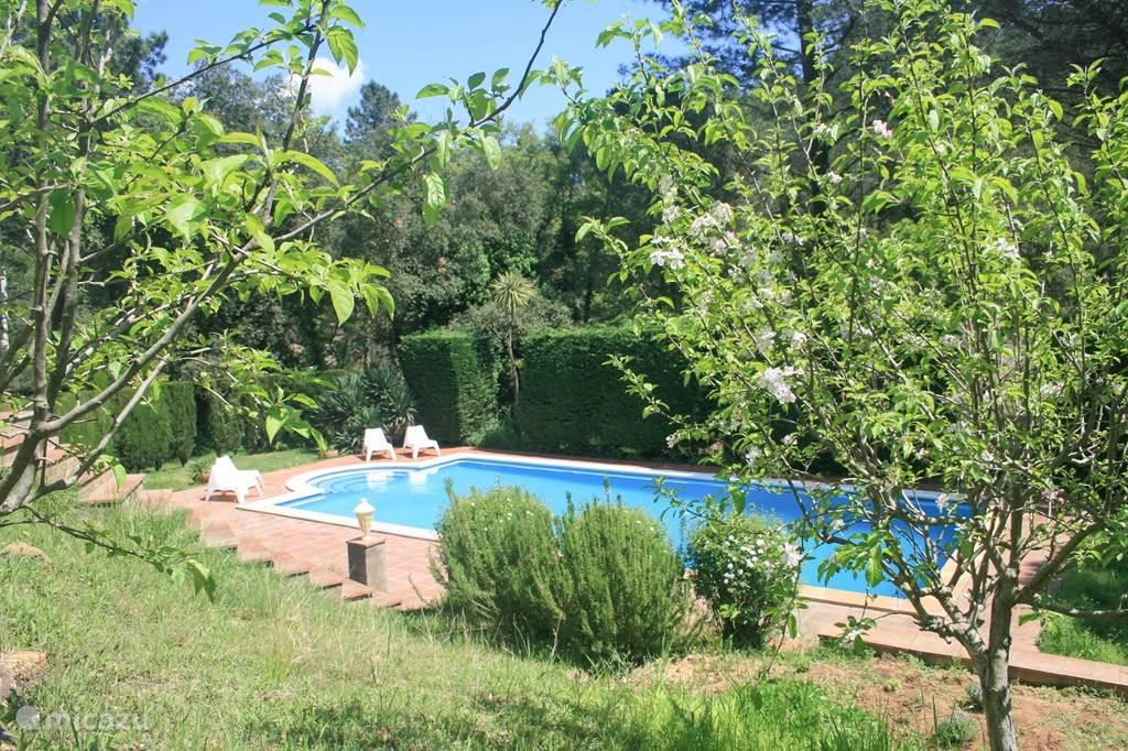 Fantastisch groot privé zwembad (12x6x2 m3), volledig vrij gelegen met uitzicht op heuvels en bos.