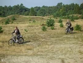 De Veluwe een prachtig natuurgebied om te wandelen en te fietsen
