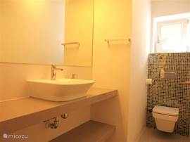 Toilet en wastafel bovenverdieping