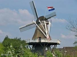 Molen in vledder
