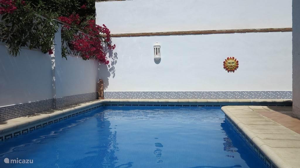 Een verkoelende duik na bijvoorbeeld een heerlijke wandeling of na het zonnebaden