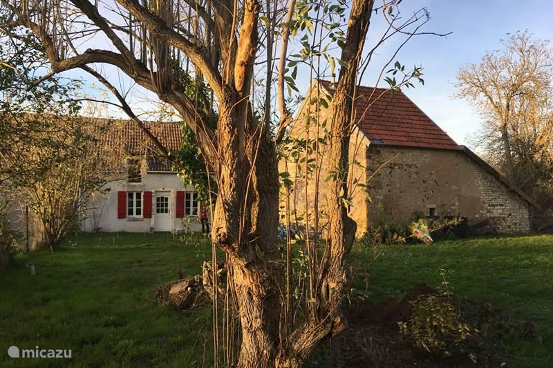 Vakantiehuis Frankrijk, Indre, Pruniers Gîte / Cottage La Pichonette