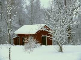 Proef de sfeer van de Zweedse winter