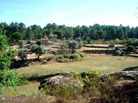 overzicht van Quinta do Pinheiro Manso met in de verte de vakantiehuisjes