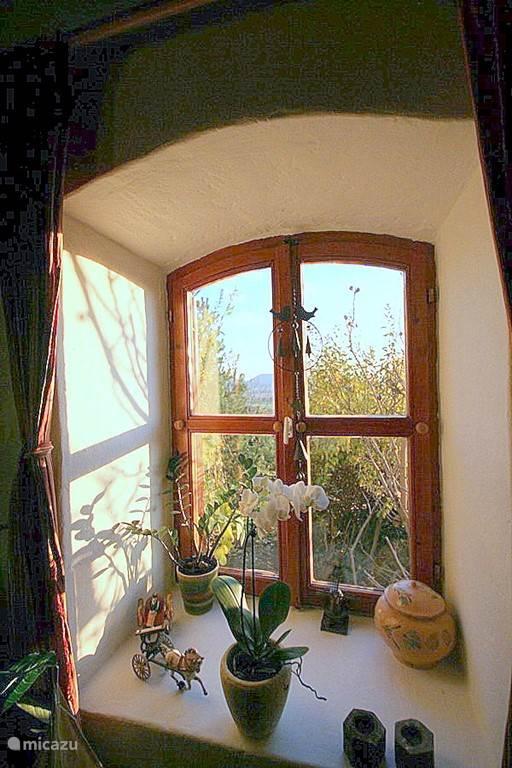 Doorkijk vanuit zijraam vanuit de woonkamer op de tuin.