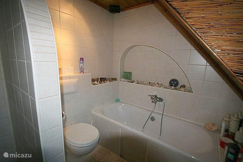 Badkamer boven het ligbad, toilet daarnaast nog een douche en wastafel