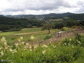 Mountains, forests, meadows; the nature of the volcanic Eifel breathtaking,