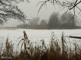 uitzicht over de Teich