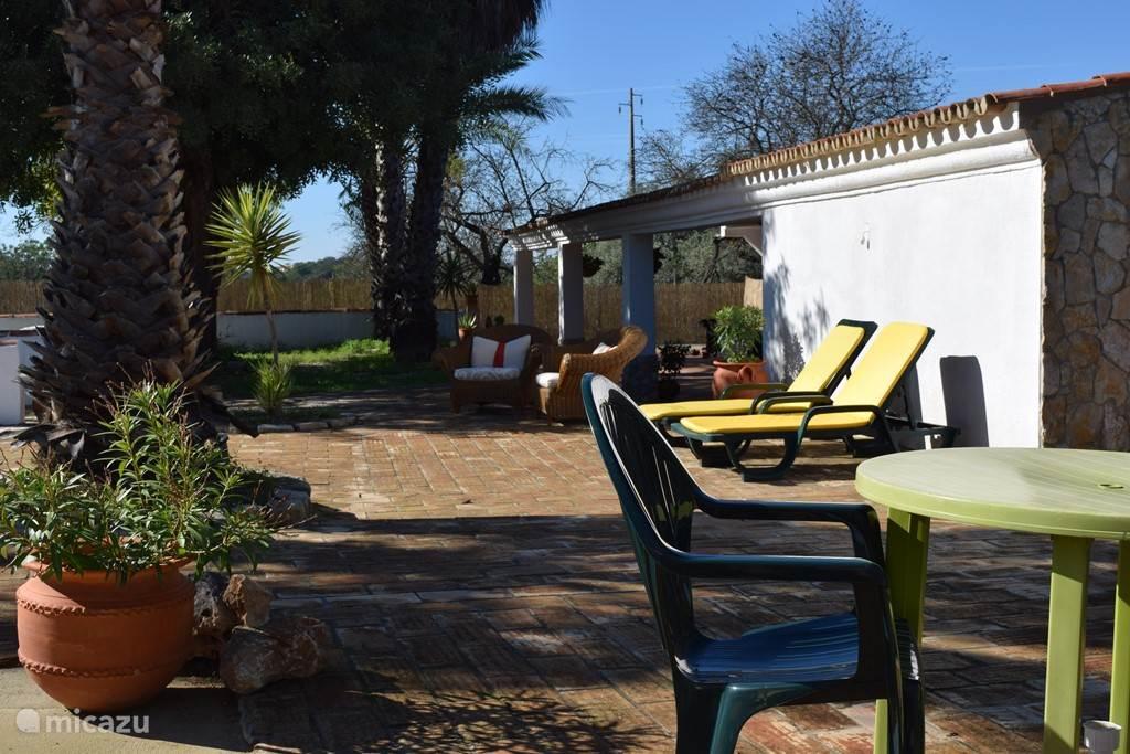 Het zonneterras voor het huis tussen de palmen. Op de achtergrond het grote overdekte terras (6 bij 15m)