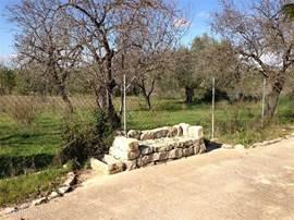 In het land van steen mag een stenenbank niet ontbreken, mooi naast de amandelbomen gepositioneerd.