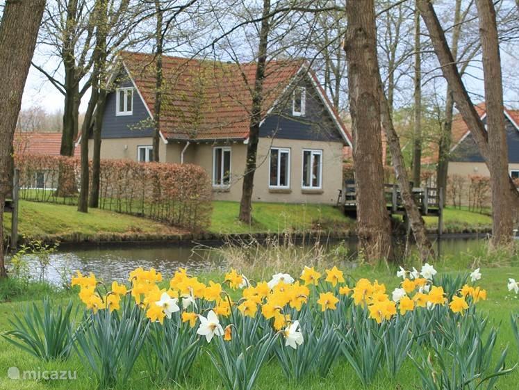 Vacation rental Netherlands, Drenthe, Westerbork - holiday house Formosuslucus