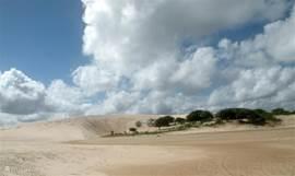 fantastische zandduinen kom je langs de hele kust tegen