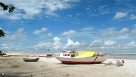vissersbootjes op het strand. vissen is hier de belangrijkste bron van inkomsten
