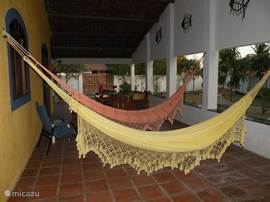 relax in the hammock. There is plenty of this on all sides of the house