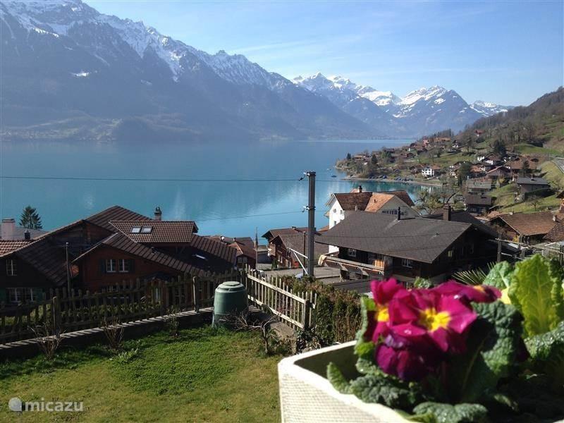 Vakantiehuis Zwitserland, Berner Oberland, Oberried am Brienzersee - studio Berner Oberland - Panorama studio