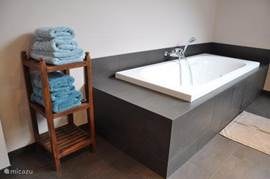 bath in sleek style. The carpet and trim around the tub is cork.