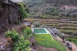 Natuurlijke Zwembad, 10m x 3.80m x1.30/1.80 diepte) 10 meter van het huis gelegen.