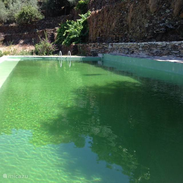 Natuurlijke zwembad met water rechtstreeks uit de bergbron.