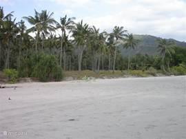 Zoals is te zien is het strand erg schoon. Laat daarom ook geen rommel liggen als u het strand verlaat.