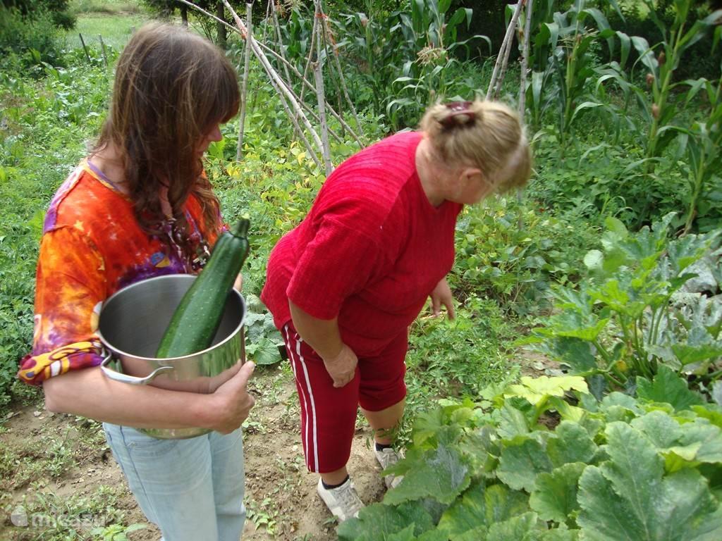 Met de buurvrouw In de groentetuin tegenover het huis