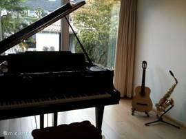 Muziekkamer met vleugelpiano