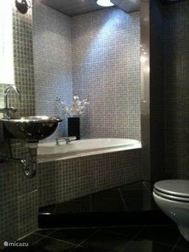 Moderne badkamer met bad en douche, wc en twee wastafels