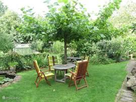 Tuinzitje onder de boom