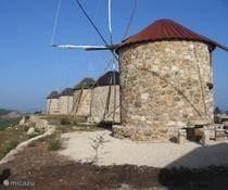 Met helder weer ziet u in de verte vanaf de veranda van Casa de cima deze gerestaureerde windmolens in de  Serra de Atelhada bij Penacova. Een mooie wandeling over de bergrug gecombineerd met bezichtiging van deze authentieke windmolens, die nu ook als accomodatie worden verhuurd.