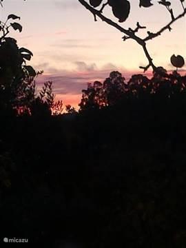 Als de zon onder gaat kleurt het prachtig rood.