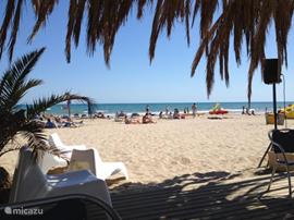 Vilanova beach, hippe strandtent. Het strand is met 10 minuten autorijden of busverbinding te bereiken. Brede stranden en langzaam aflopend water en bewaakt.