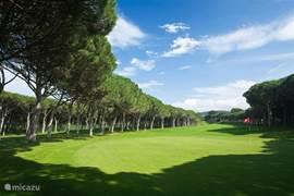 Voor de golfers onder ons bevindt zich vlakbij de villa een luxe golfbaan.