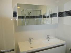 Luxe badkamer met dubbele wasbak, ruime douchecabine en een toilet