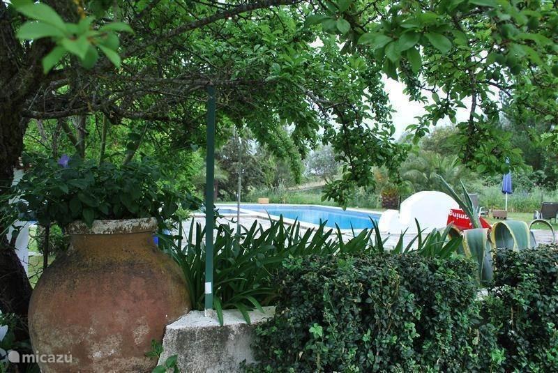 Heerlijk klimaat in de Alentejo