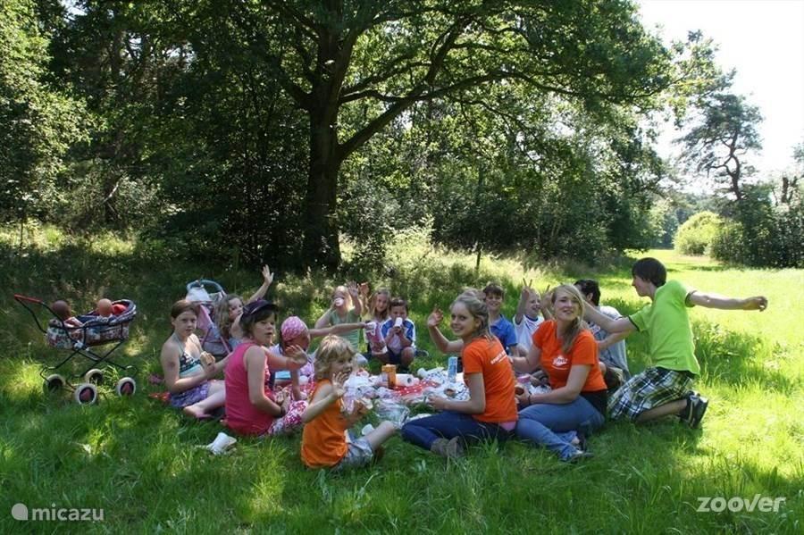 Met zijn allen picknicken in het bos