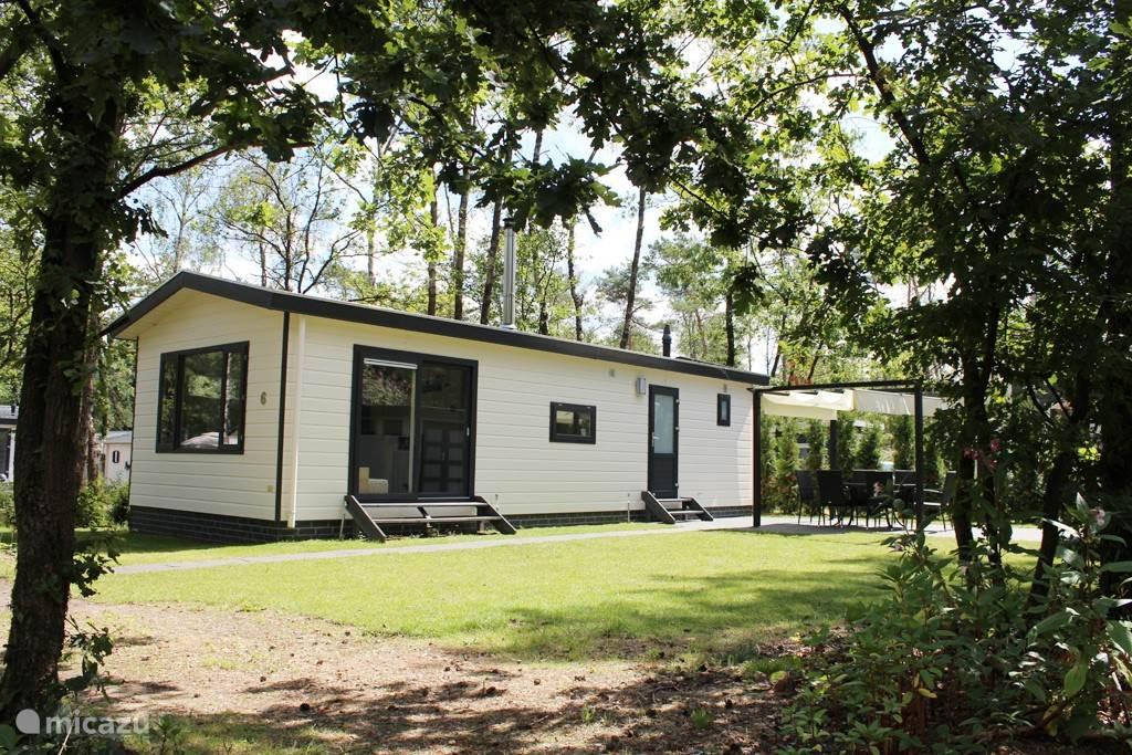 Vakantiehuis Nederland, Gelderland, Hoenderloo - bungalow Sfeervolle BosBungalow 6